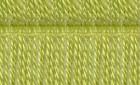Lime 2041