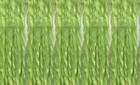 1028 Lime