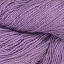 5041 Lys violet