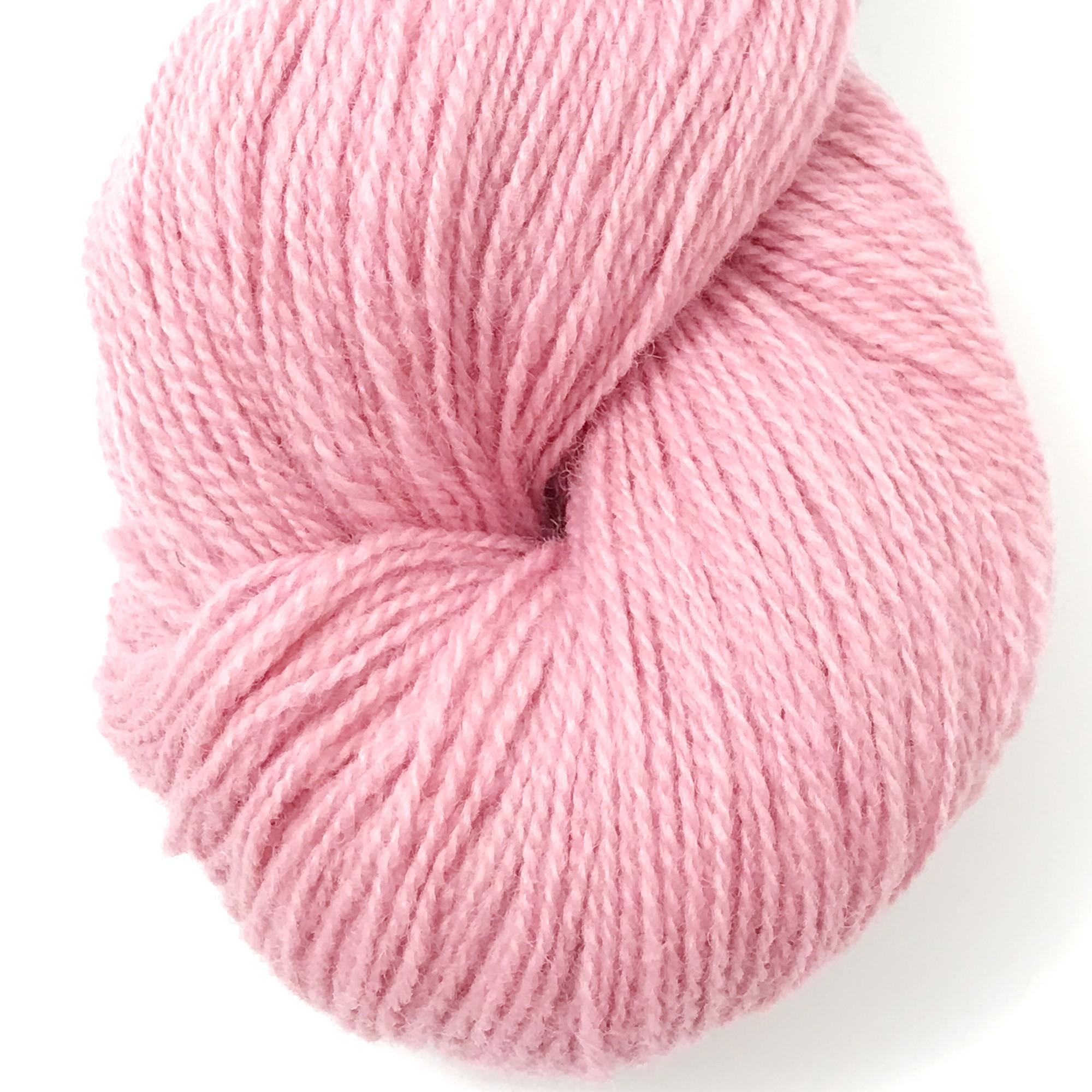 6121 rosa